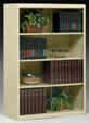 4-Openings Executive Bookcase.